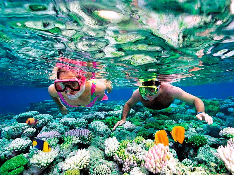 Snorkeling di Karimunjawa